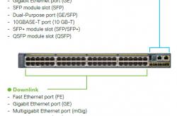 Các cổng và SKU trên thiết bị chuyển mạch Switch Cisco Catalyst là như nào?